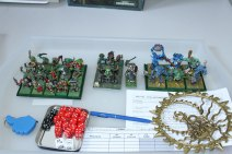 armies-orcs-and-goblins-2