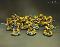 Rogue Trader Imperial Fists