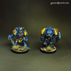 Imperial Fists Librarians